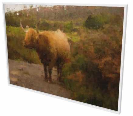 highland cow artwork