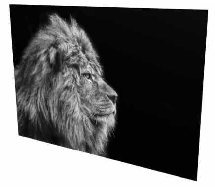 striking artwork